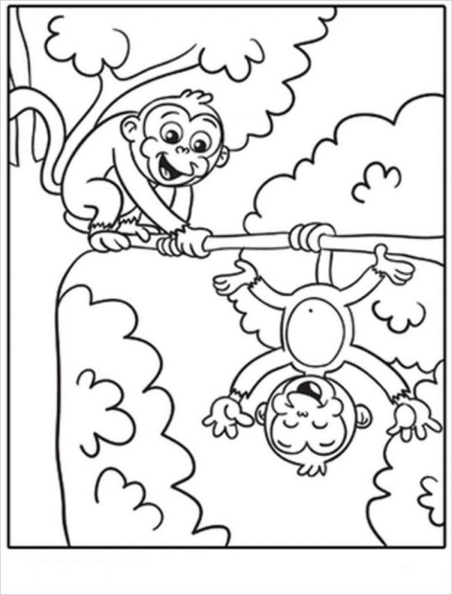 Đôi bạn khỉ cùng chơi vui vẻ