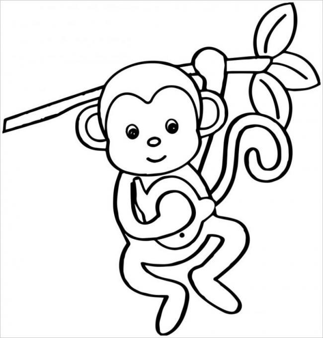 Khỉ con đu mình lên cây chỉ với một tay giỏi chưa nè