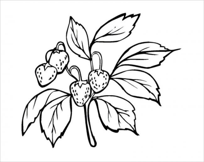 quả dâu tây lúc nào cũng đẹp kể cả tranh tô màu