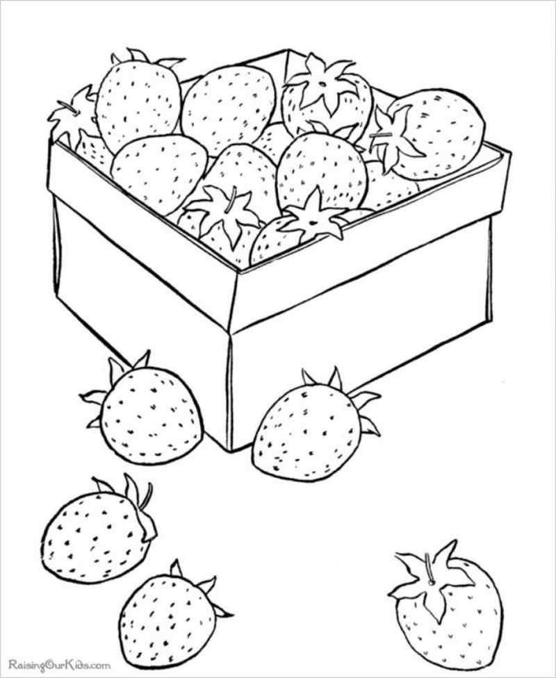 hình ảnh thùng dâu tây mới được thu hoạch
