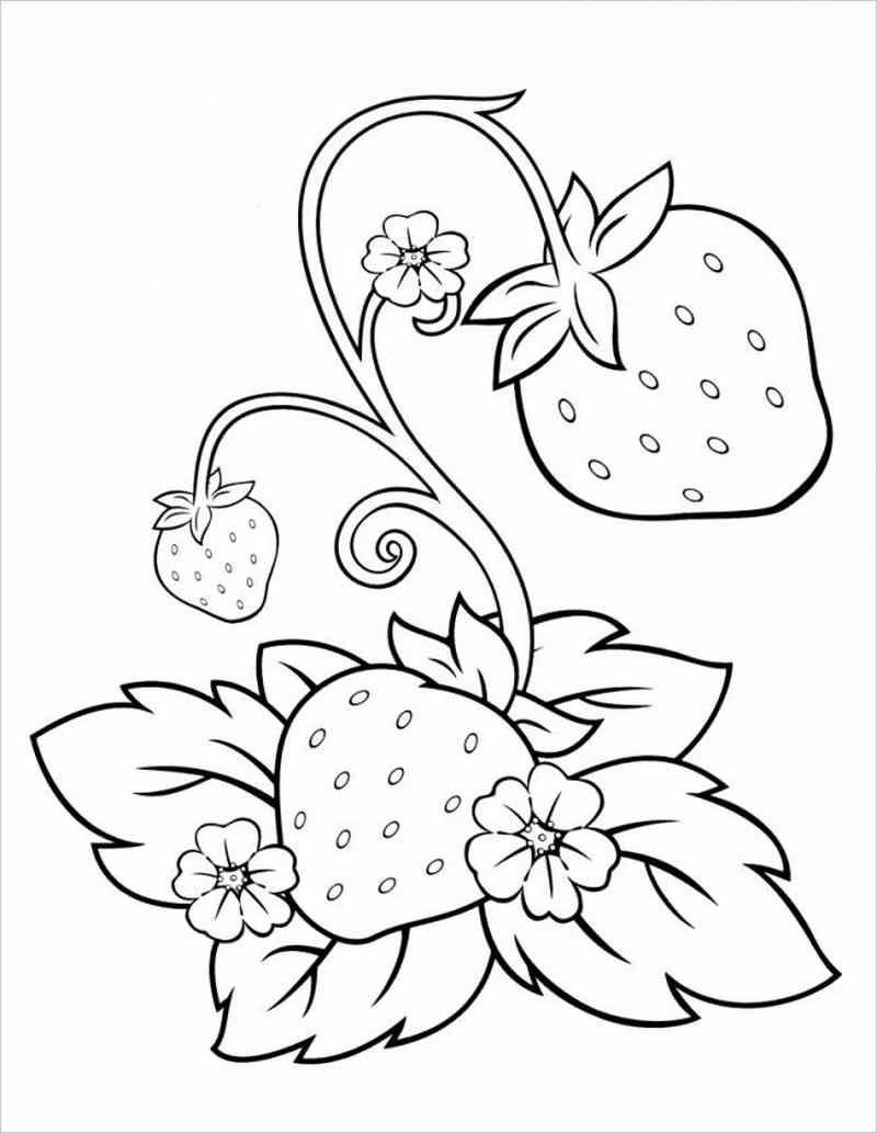 tranh tô màu dạy bé phân biệt màu sắc cây, lá, quả dâu tây