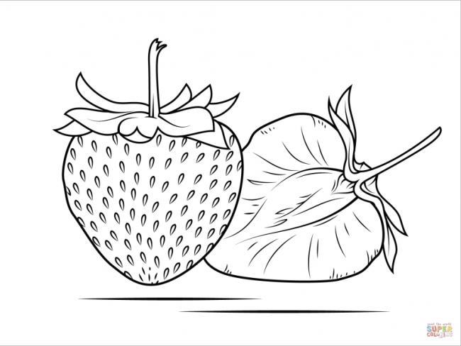 tranh tô màu quả dâu tây khi được bổ đôi