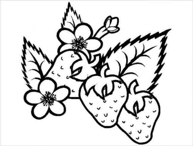 hình ảnh trái dâu tây chân thực