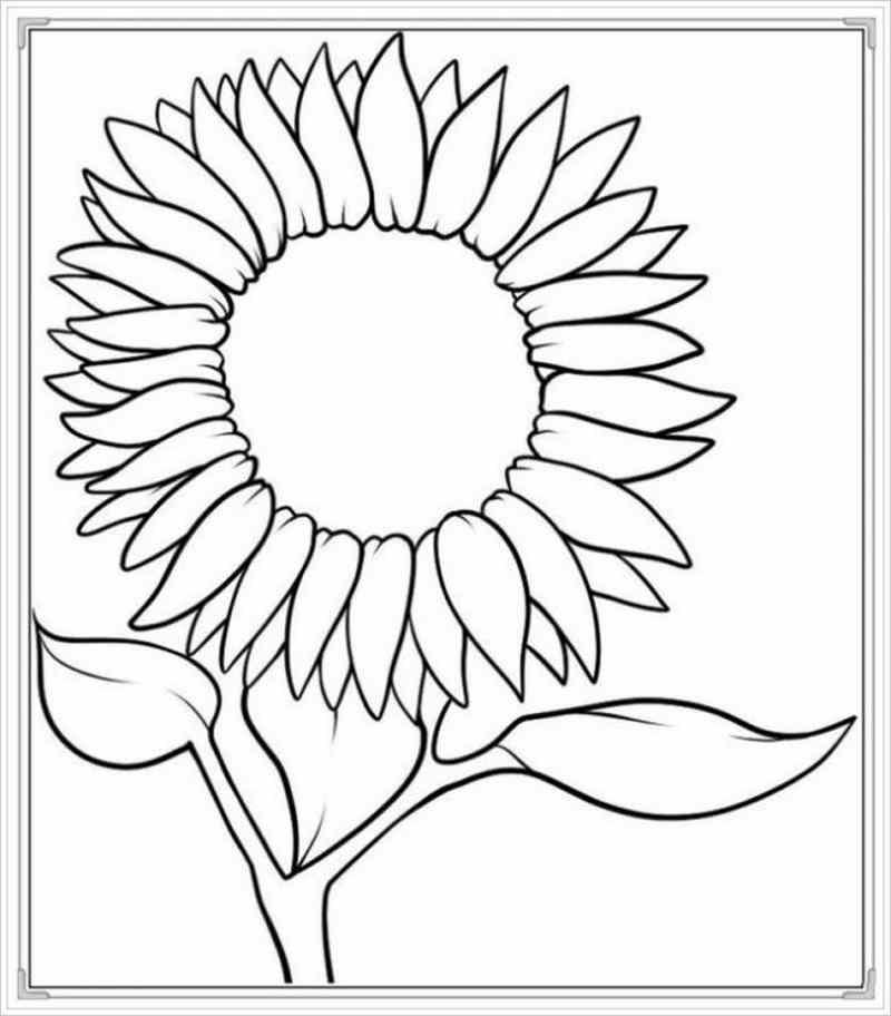 Tranh bông hoa hướng dương đơn giản