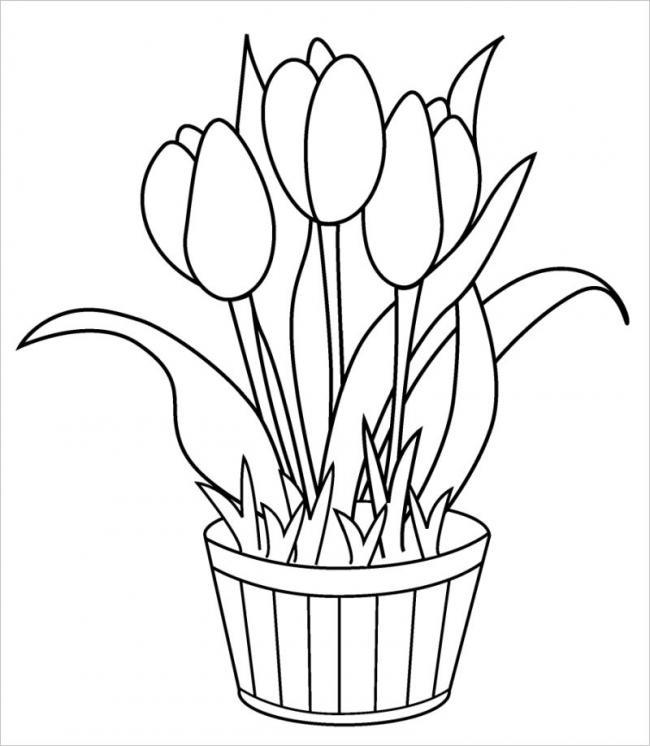 hình vẽ hoa tulip rất thích hợp đặt trong phòng khách