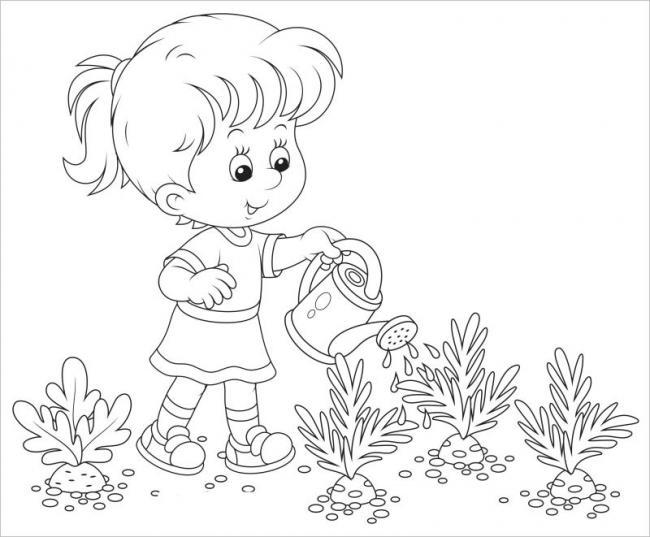 hình vẽ em giúp bà chăm sóc cho luống cà rốt