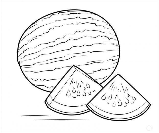 hình vẽ quả dưa hấu có cấu tạo vỏ xanh và ruột đỏ