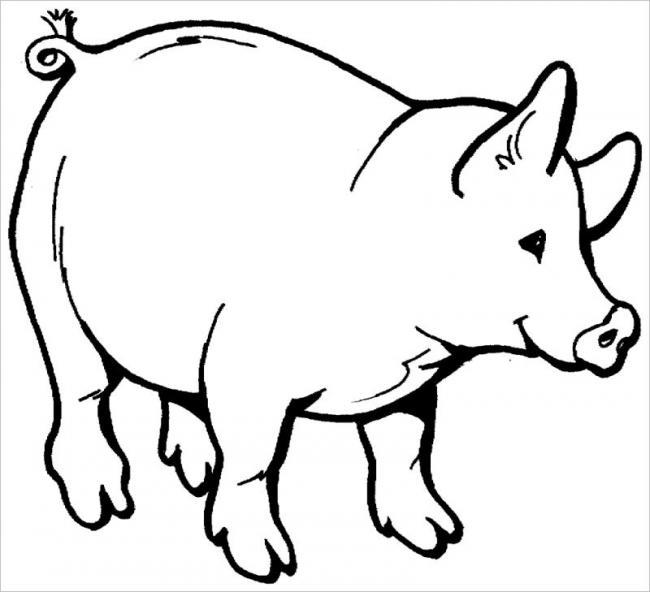 Tranh tô màu con lợn tuổi hợi