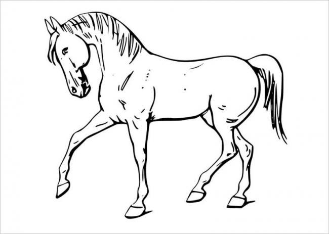 Tranh tô màu con ngựa tuổi Ngọ