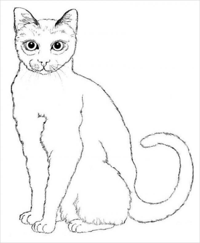 hình ảnh tranh tô màu con mèo tuổi mão