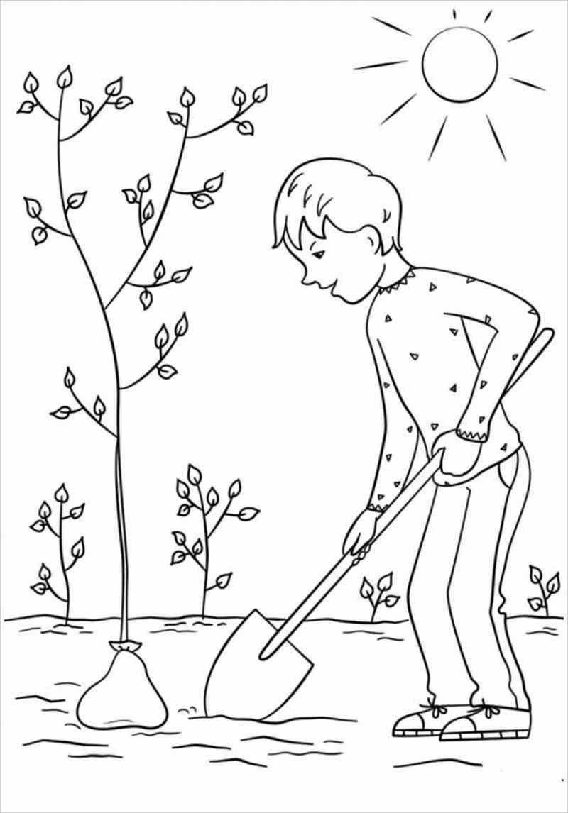 Bức tranh bé trồng câybuổi bình minh