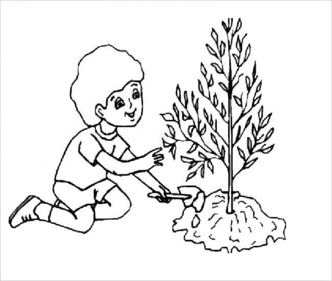 Tranh tô màu tết trồng cây của bé