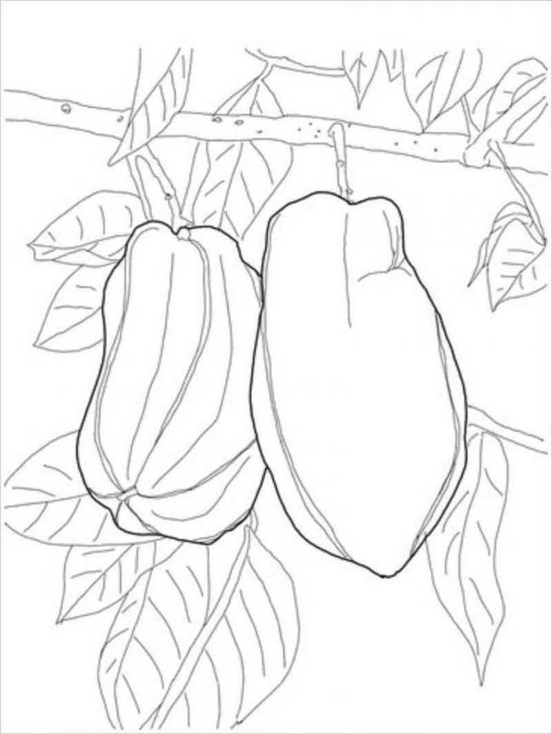 Tranh tô màu quả đu đủ trên cây