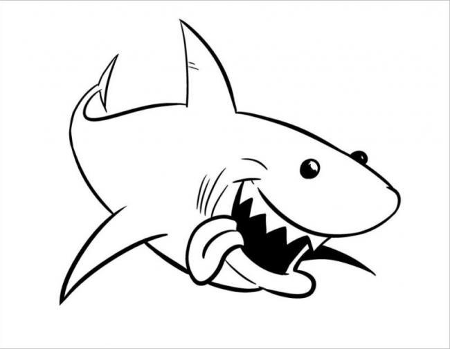HÌnh ảnh cá mập cười vui