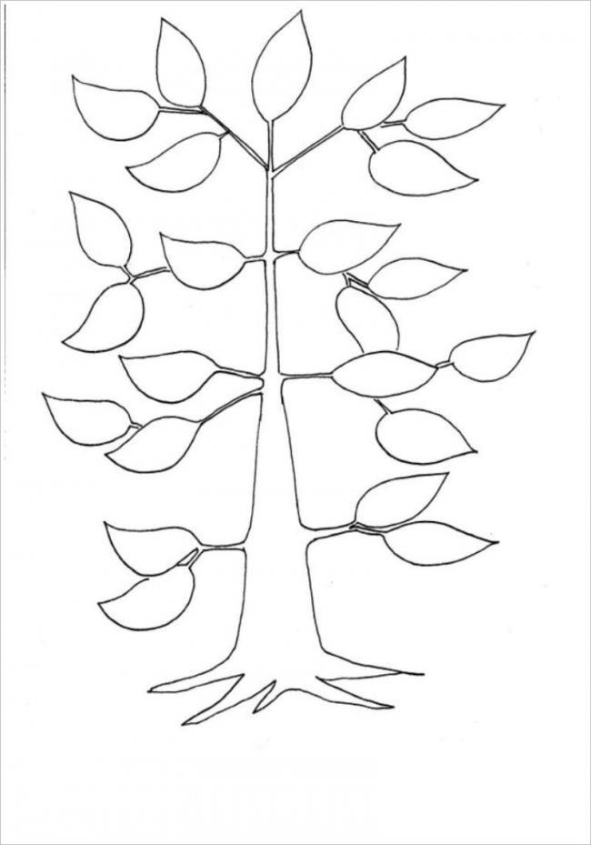 Hình ảnh cây trong giai đoạn phát triển lá và cành