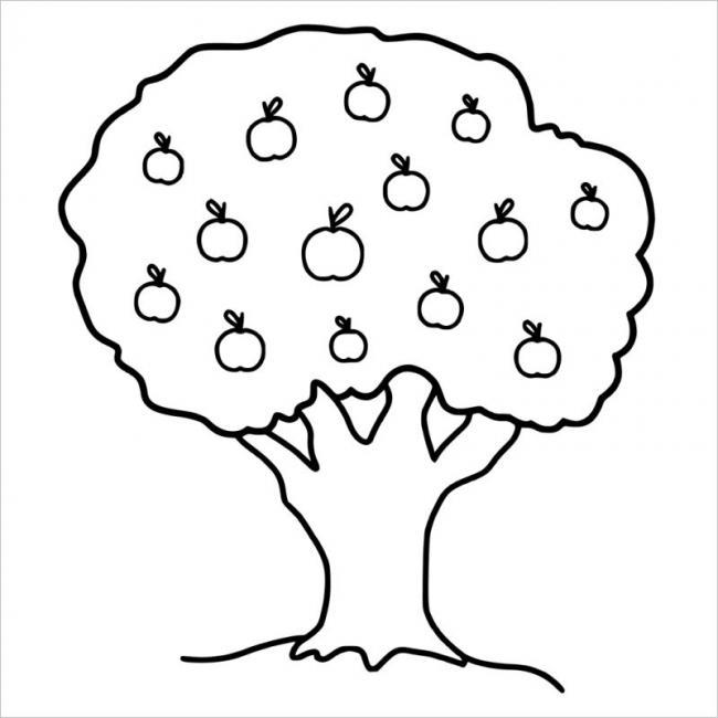 hình ảnh cây cho ra hoa và quả khi sinh sản