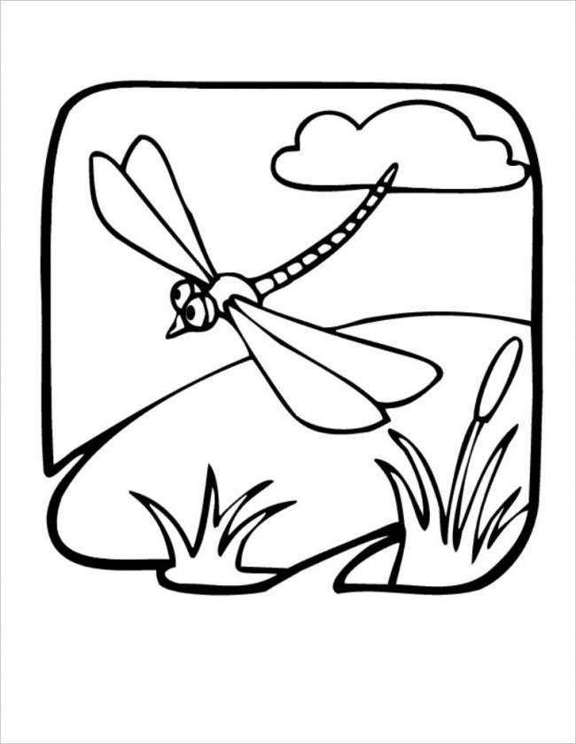 Chuồn chuồn đi dạo quanh hồ một ngày nắng đẹp