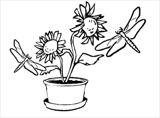 Chuồn chuồn bên hoa hướng dương