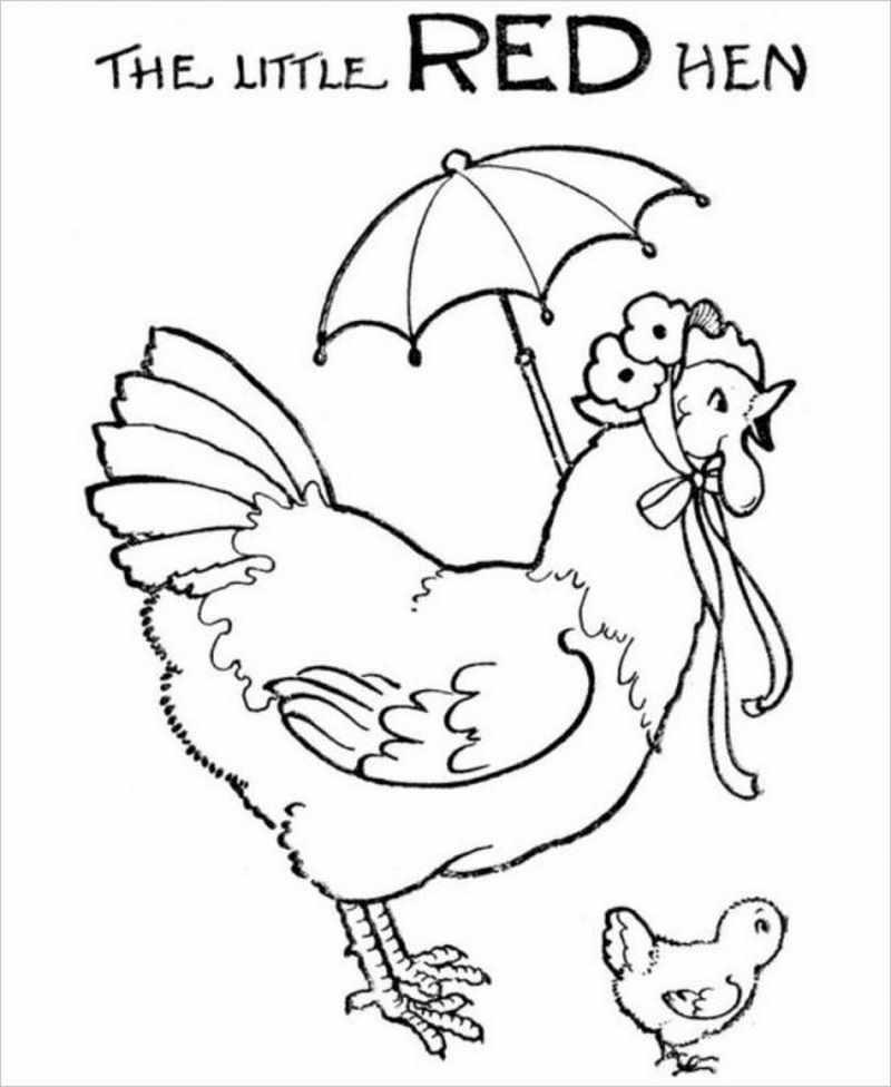 Hình ảnh gà mái điệu đà