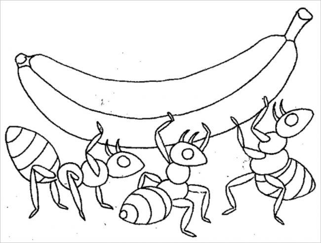 Đàn kiến đang chăm chỉ để mang quả chuối về tổ