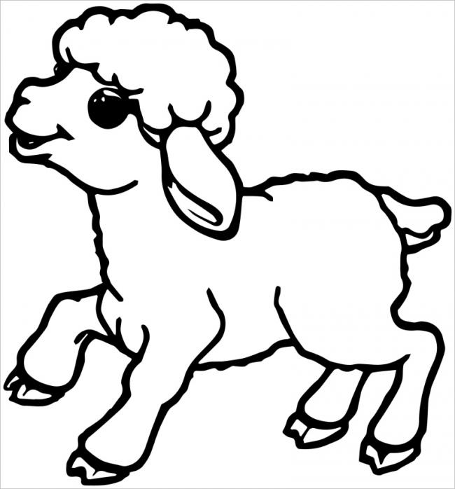 hình ảnh con cừu