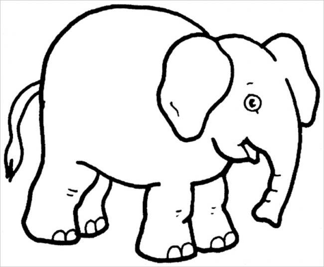 hình ảnh voi con kiếm thức ăn