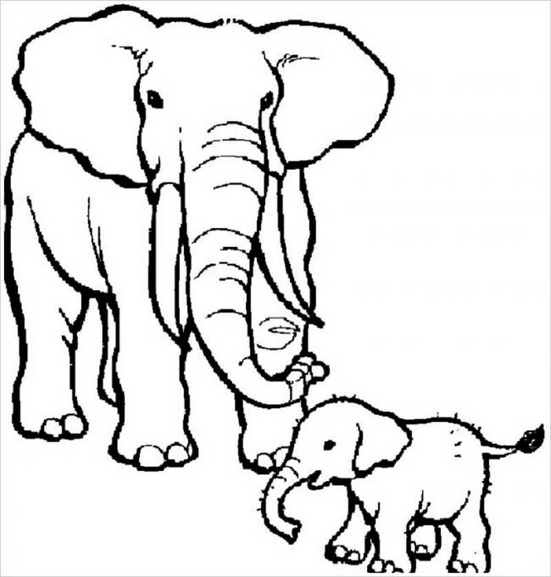 hình ảnh hai mẹ con nhà voi