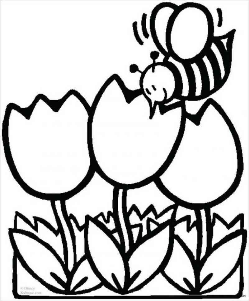 Chú ong vàng bên khóm hoa tulip màu đỏ thắm