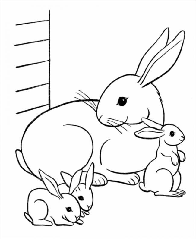 Thỏ mẹ âu yếm bên thỏ con