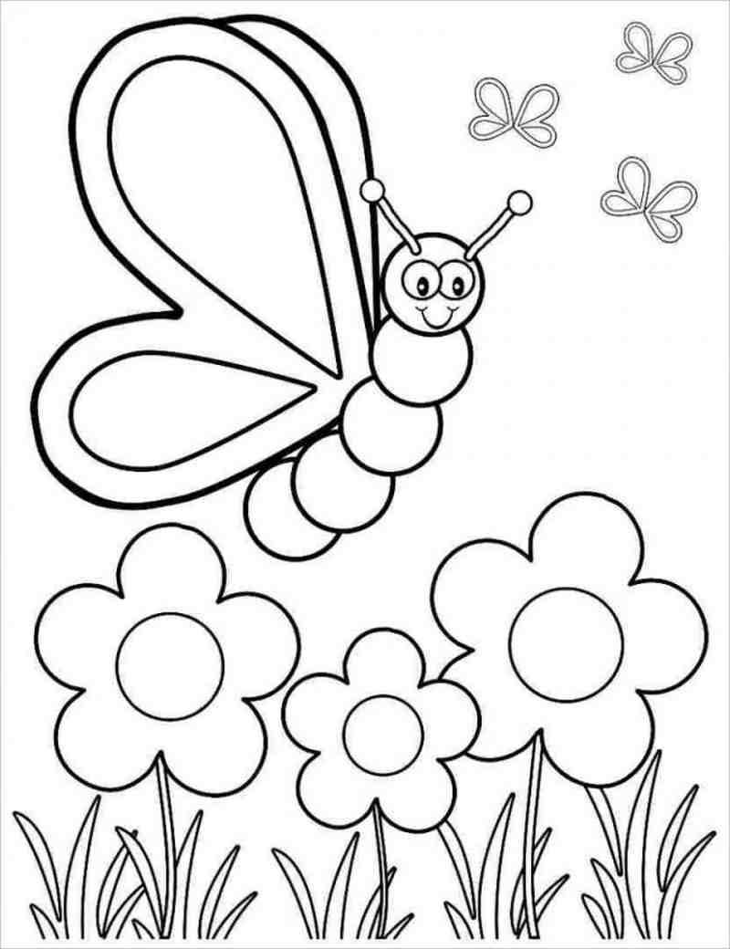 hình ảnh bướm bay rập rờn