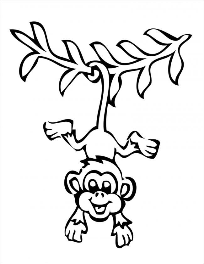 hình ảnh khỉ đu cây bằng đuôi