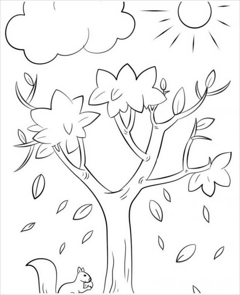 hình ảnh cây rụng lá