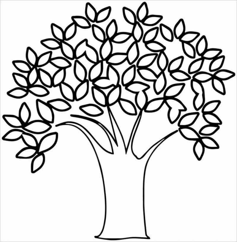 Cây lá xanh rì
