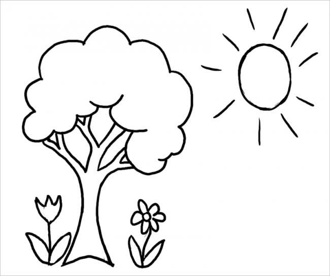 Cây và hoa tươi tốt dưới ánh sáng mặt trời
