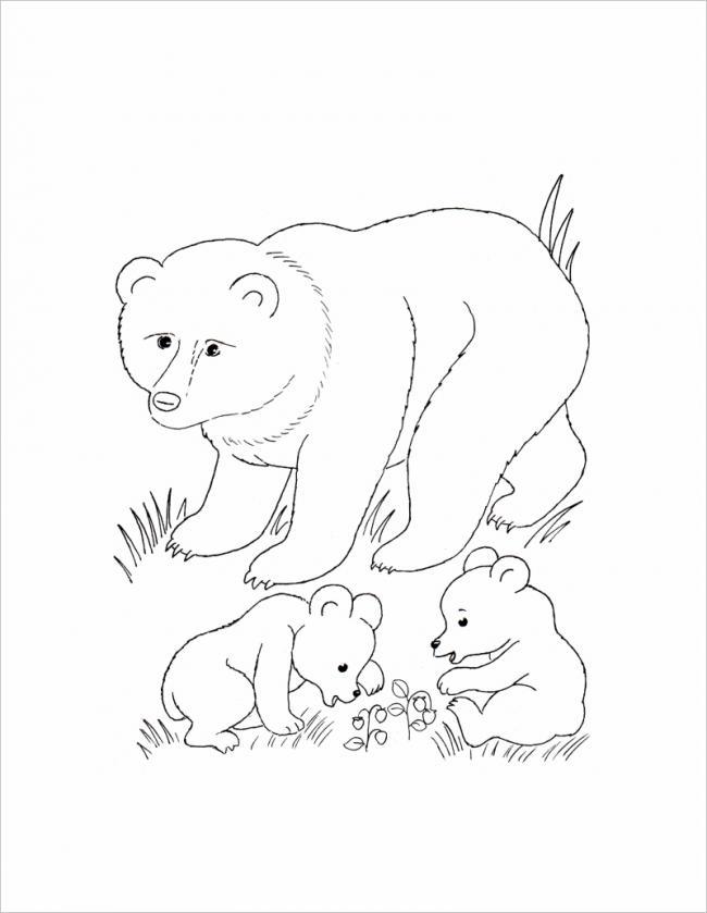 Gấu mẹ và hai con
