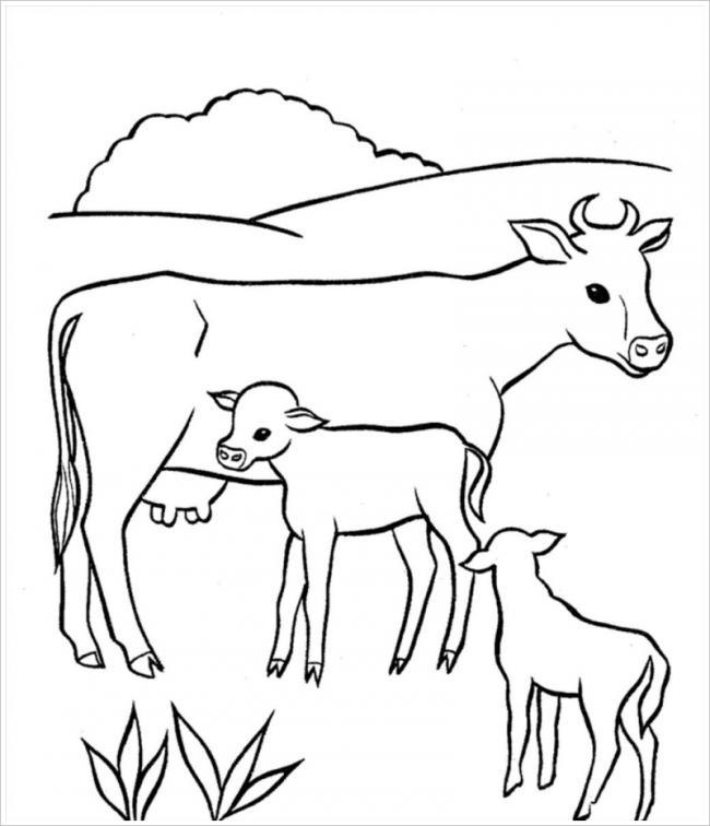 hình ảnh ba mẹ con nhà bò