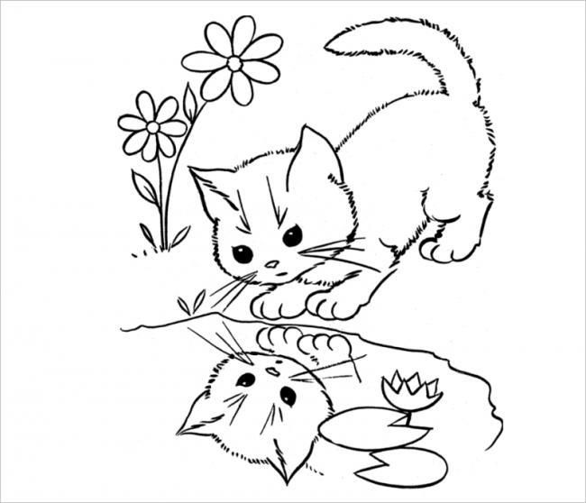 hình ảnh mèo con soi mặt nước