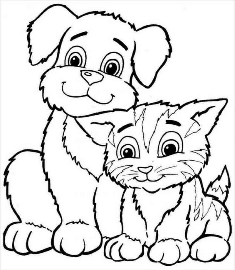 hình ảnh chó và mèo