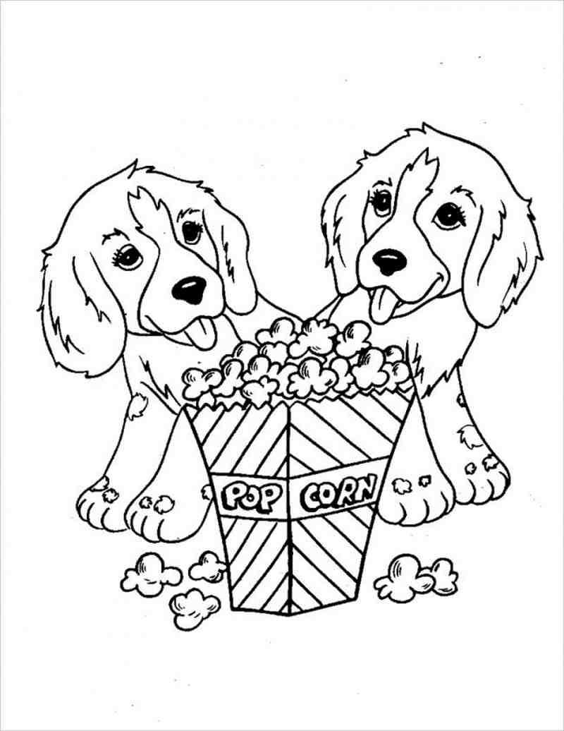 hình ảnh hai chú chó