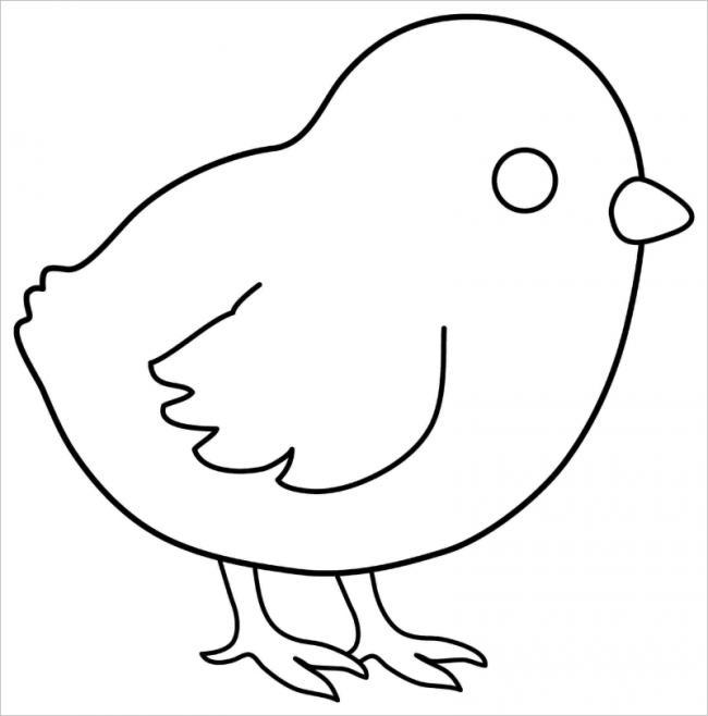 hình ảnh gà con