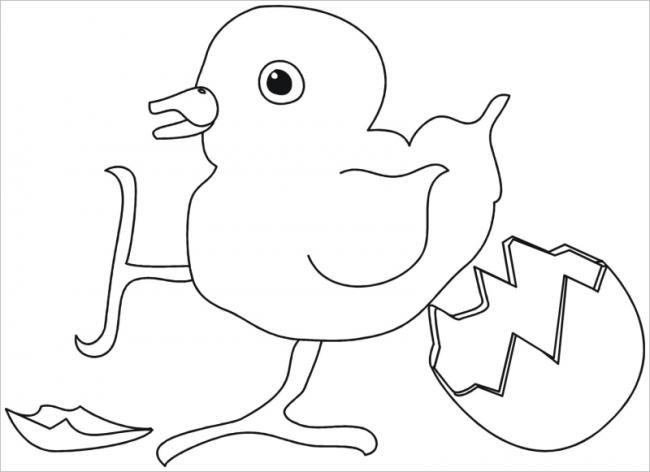 hình ảnh gà con mới nở