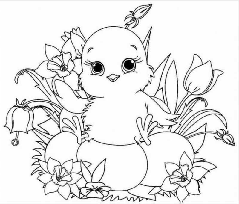 hình ảnh gà con bên hoa