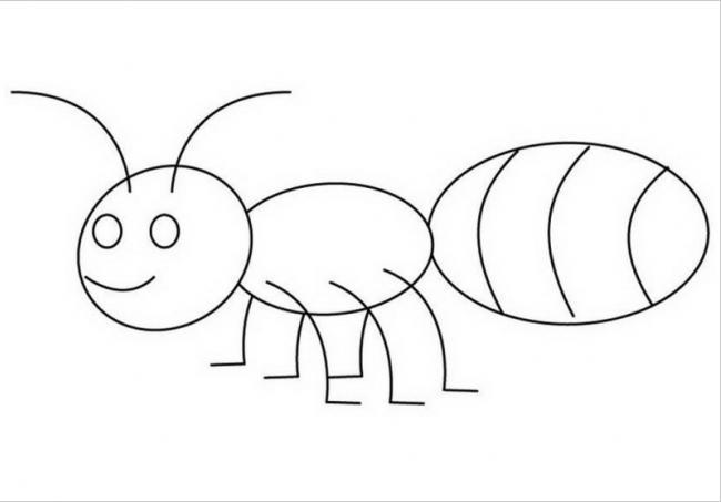 Chú kiến bụng bự