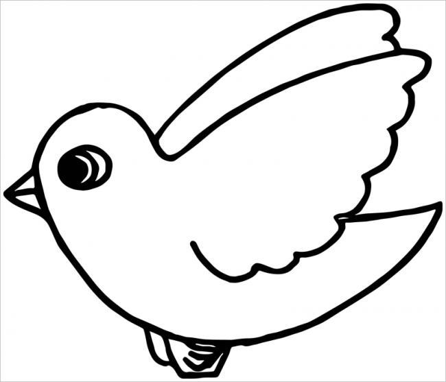 hình ảnh con chim nhỏ