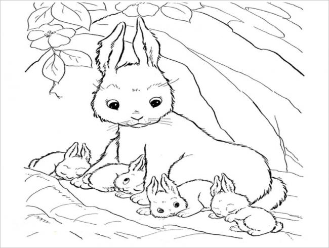 hình ảnh thỏ mẹ bên các con