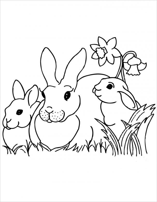 Thỏ mẹ cùng hai con nghỉ ngơi