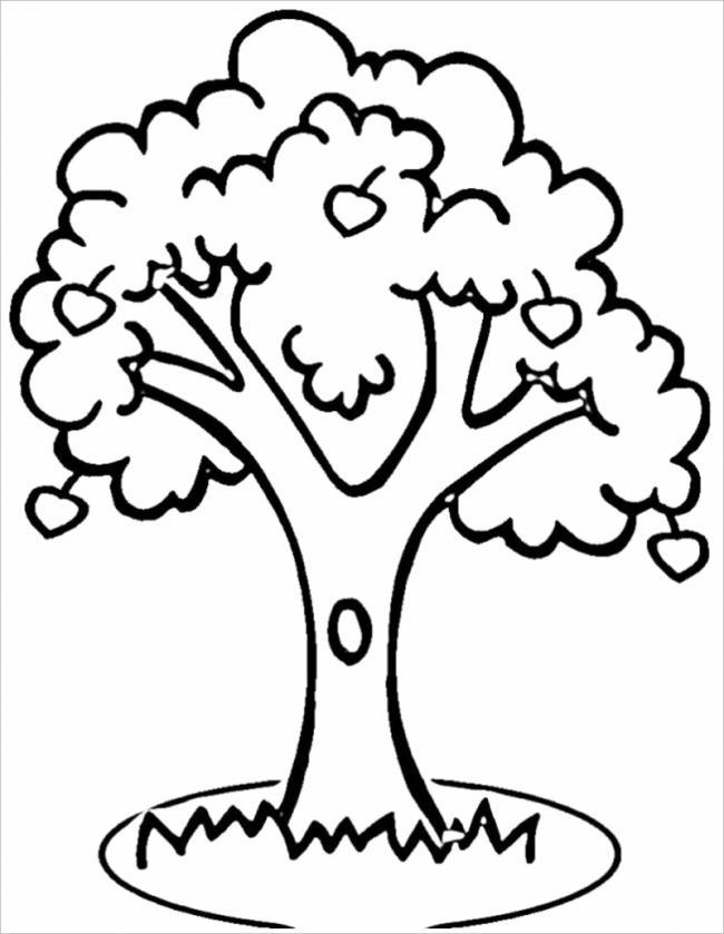 hình ảnh cây xanh với nhiều quả chín