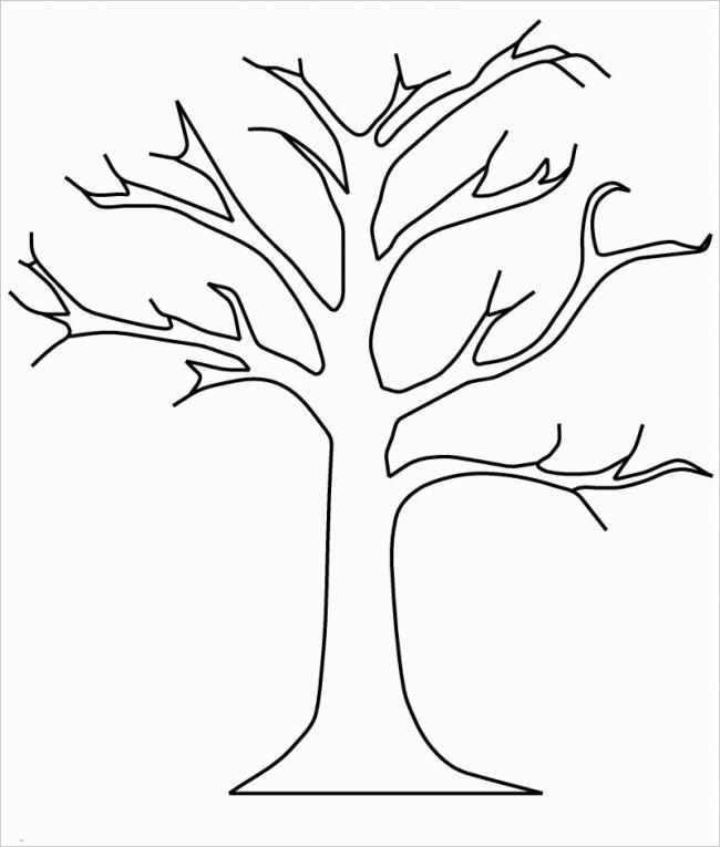 hình ảnh cây trụi lá mùa đông