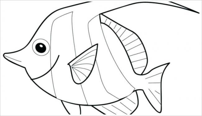 hình ảnh nàng cá trông thật quyến rũ