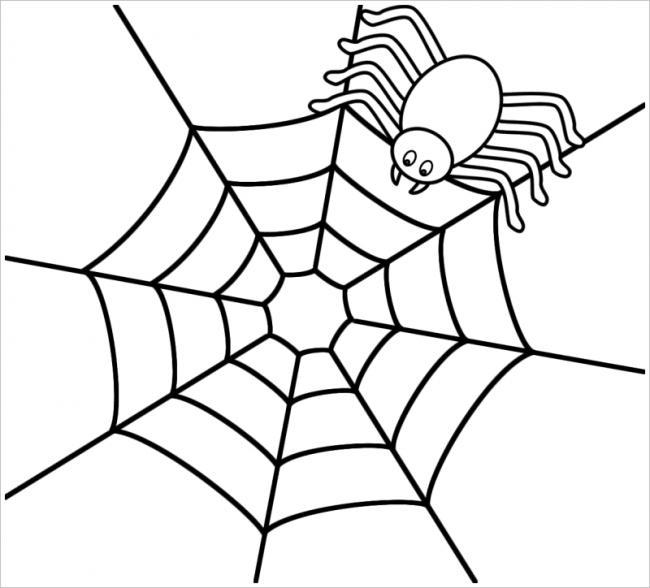 hình ảnh con nhện giăng tơ rình mồi
